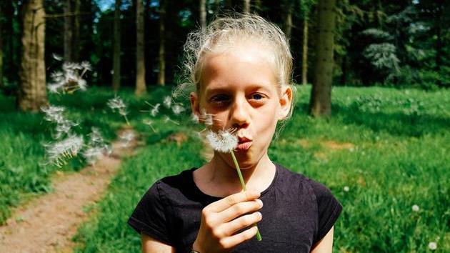 girlflower